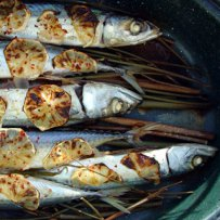 FOOD - FISH - BAKED MACKEREL WITH LEMON
