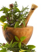 320 x 320: FOOD - HERBS - MORTAR AND PESTLE