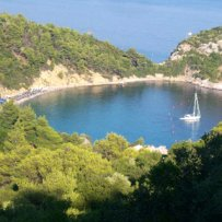 320 x 320: GREECE - SPORADES - SKOPELOS - COVE