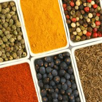 320 x 320: FOOD - SPICES