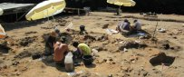 6,000-Year-Old Wine Found In Greece
