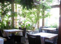 Geona's, an exotic garden for a change of style