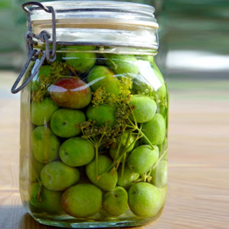 GREEN OLIVES IN A JAR