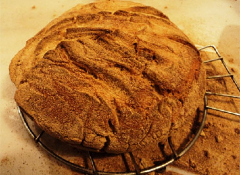 bread,bread by Jim Haley,recipes by Jim Haley,no-knead bread