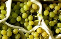 320 x 320: FOOD - DRINK - WINE - GRAPES