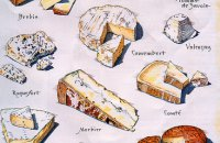 The Families of French Cheese
