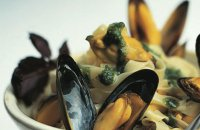Herbed Mussels and Pasta